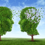Alzheimer's: The Unforgettable Disease