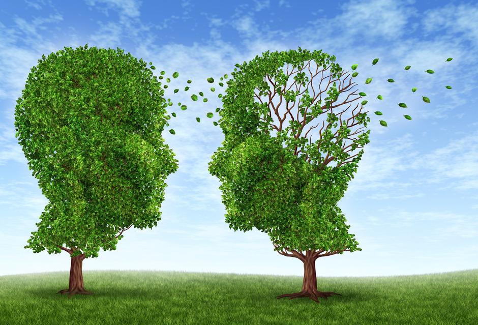 Alzheimer's: The Unforgettable Disease
