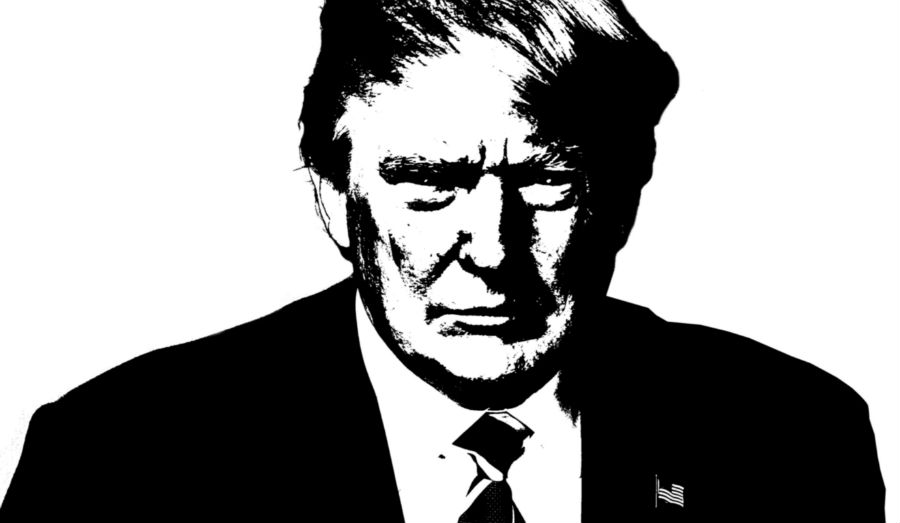 Donald Trump image in black and white