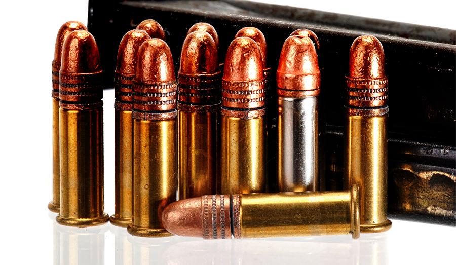 .22 rifle bullets
