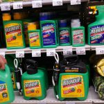 Monsanto's Roundup pesticide on store shelves